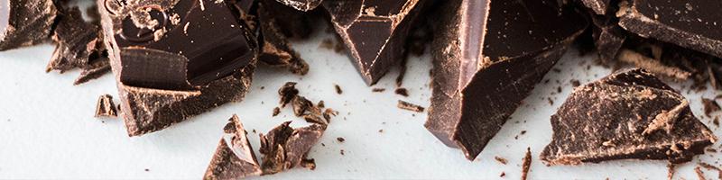 Chocolade is giftig voor een hond